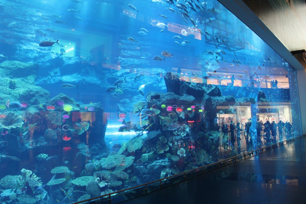 5 brand new things to do in Dubai IMG 1358 1024x682